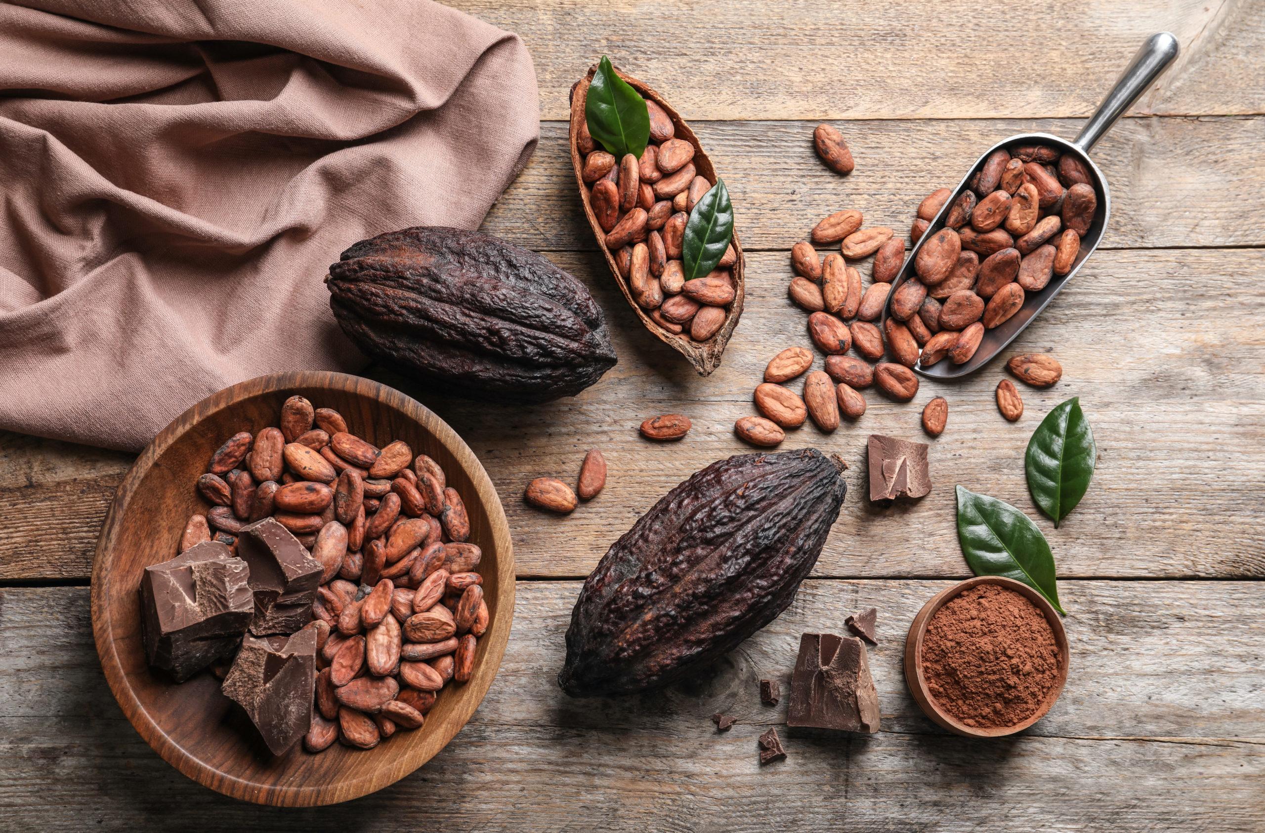 clima, fave di cacao, cioccolato, su tavolo di legno