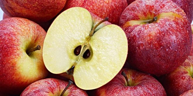 Sementes de maçã para produzir óleo, graças a um novo sistema de extração 1