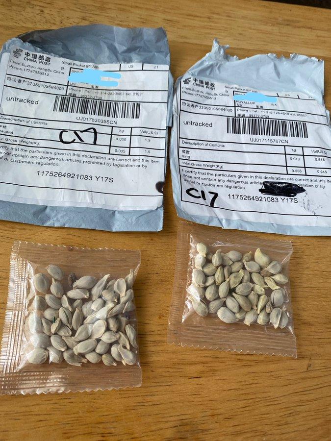 semi pacchetti cina truffa