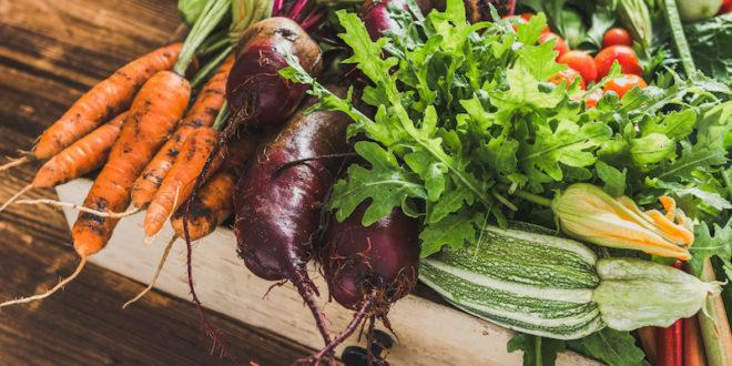 bio verdura fibre coltivare agricoltura campi Bio organic vegetables on farmer market, farm fresh vegetable box on wooden background, vegetarian food concept