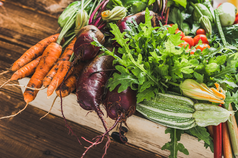 Orgânico e polêmica: agricultura convencional precisa ser convertida 10