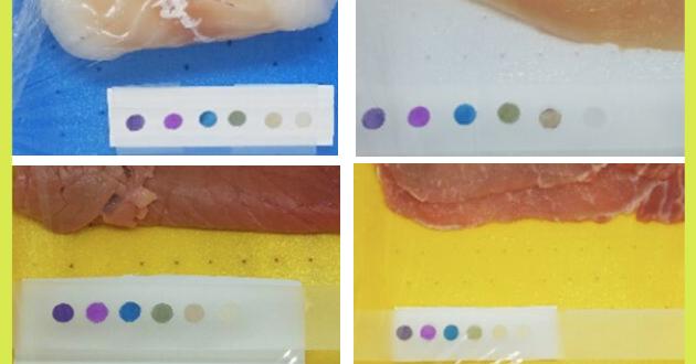L'etichetta intelligente che ti dice se il cibo è ancora commestibile: il progetto Safer Smart Labels