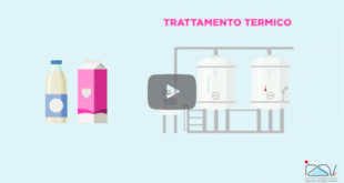 video izsve latte trattamento termico