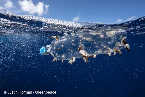plastica, Greenpeace, bottiglia galleggiante