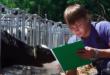 benessere animale, frame dell'Istituto zooprofilattico sperimentale delle Venezie